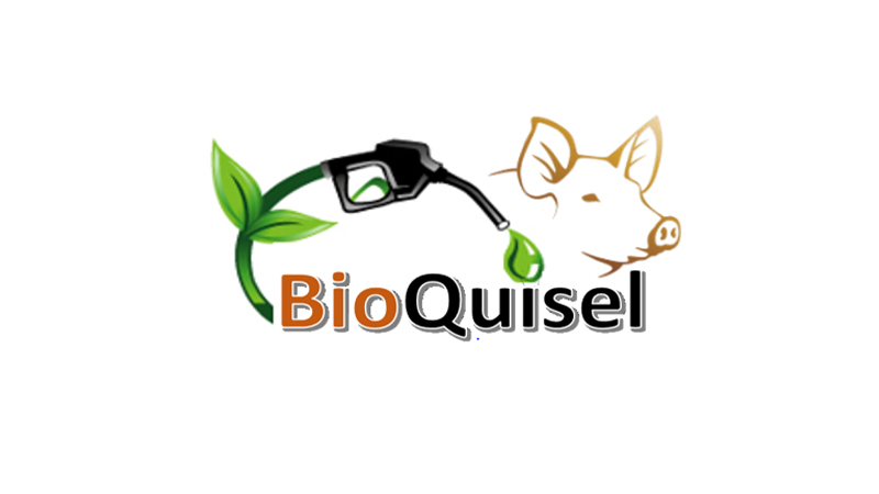 Illustrated logo for BioQuisel showing a pig and a gas hose nozzle