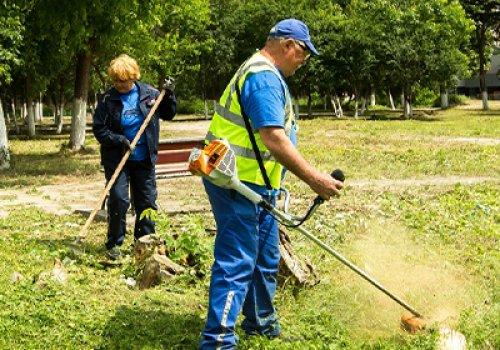 Vibrant Ford Volunteers Strengthen Communities in Europe